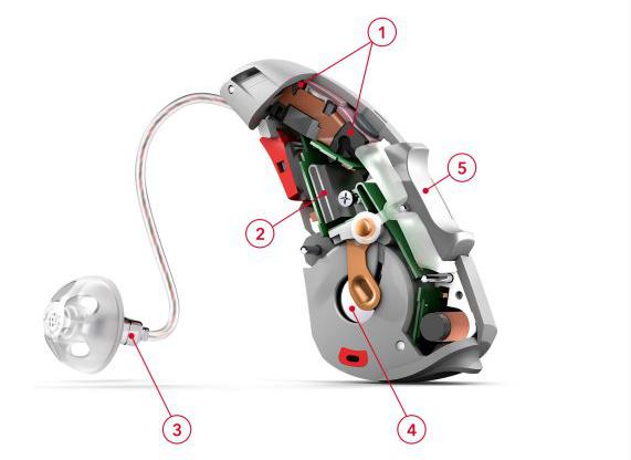 Aparat słuchowy zauszny schemat budowy